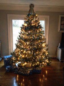 Cunning Tree 2