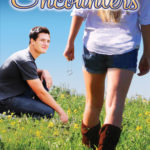 Review of Chance Encounters by J. Sterling