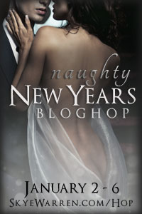 New Year's Naughty Blog Hop