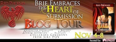 Blog Tour – Brie Embraces the Heart of Submission by Red Phoenix