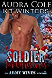 soldier-for-christmas